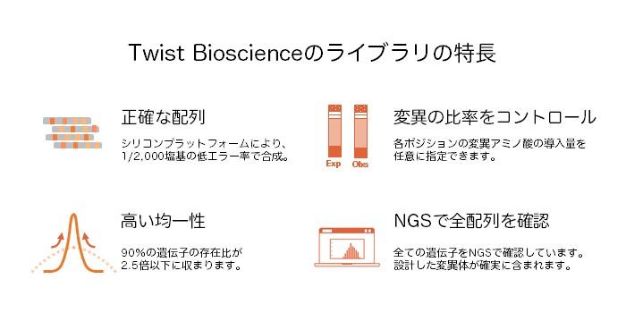 コンビナトリアル、部位飽和、創薬、抗体工学、タンパク質工学、タンパク質安定化、ペプチド、終止コドン、CDR